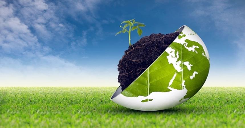 caldaie-a-biomassa